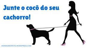 junte o coco do seu cachorro
